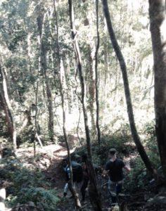 tsitongambarika trekking